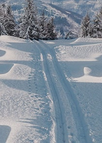 3D Schneelandschaft